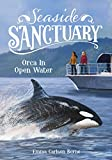 Orca in Open Water (Seaside Sanctuary)