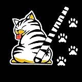 G wie Katze–Aufkleber Katze für Heckscheibe Auto–0195