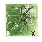 Sternzeichen Steinbock Bild - Bodo W. Klös - Farbradierung - Auflage 200, Bildgrösse 15 x 15 cm. gedruckt auf 350 gr. Hahnemühle Bütten 28 x 40 cm