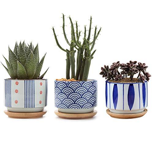 T4U 8cm Pianta Grassa Vasi Rotandi di Stile Giapponese in Ceramica con Piattini Set di 3 per Piante in Miniatura