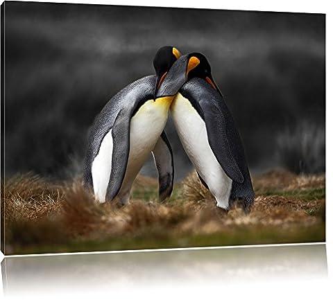 Serrant pingouins dans l'Antarctique B & W détail, Taille: 120x80 sur toile, XXL énormes photos complètement encadrée avec civière, imprimé Art mural avec cadre moins cher que la peinture ou la peinture à l'huile, pas poster ou une affiche