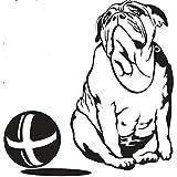 Englische Bulldogge mit Ball 25c