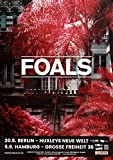 Foals - Everything Not Saved, On Tour 2019 » Konzertplakat/Premium Poster | Live Konzert Veranstaltung | DIN A1 «