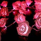 Anty-ni FRE 2M 20 LED Batterie Rose Flower Fairy String Lights ideal für Hochzeit Partei Weihnachtsdekoration - rosa Licht