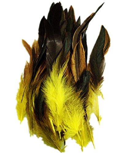 ERGEOB Hahn Feder - Ideen für die Kostüme, Hüte, Home dekor circa 100 stück 12-18cm gelb (Schwarze Und Weiße Feder Maske)