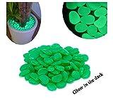 Pack da 100 sassolini luminosi decorativi fluorescenti glow in the dark. MEDIA WAVE store (Verde)