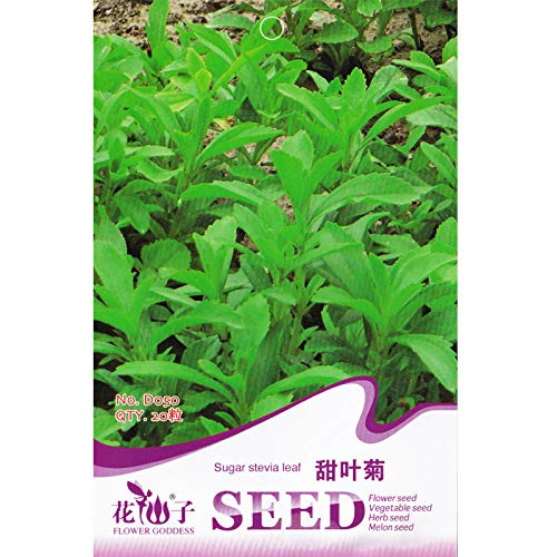 Portal Cool 100Pcs Vegetable and Fruits Sugar Cane Seeds are Rich in