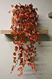Best Artificial (TM) 100cm Trailing Ivy Garland Hanging Vine String Plant (Two Tone Autumn English - TI15)