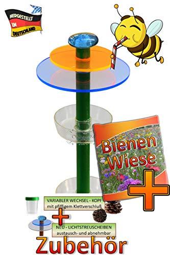 BTV Haus & Garten XXL 6X Tränke + Streulicht für Bienenhotel, Insektenhotel für Wildbienen, grün, auch für Marienkäferhaus, mit großem Zubehörset + Anleitung