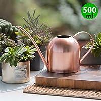 Asvert Regadera de Acero Inoxidable Diseño de Boca Larga Regadera para Plantas de Interior Patio Plantas Colgantes y Jardines al Aire Libre(Oro Rosa)