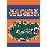 BSI NCAA Damen-Banner mit Stangenmanschette 71 x 102 cm 2-seitig
