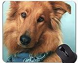 Mausunterlage, Schäferhund-Hundewelpen-niedliche Mausunterlagen, Collie im Wasser-personalisierten Rechteck-Spiel-Mausunterlagen