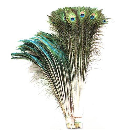 celine-lin-vera-naturale-pavone-piume-di-coda-762-813-cm-50pcs-spada-piume-508-711-cm-50pcs