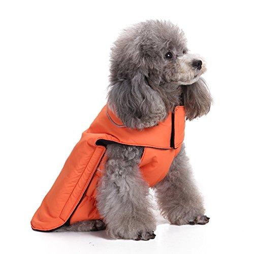 beautydecor Farbe Jacke ohne Ärmel Kostüm Winter für Welpen Hunde (Kostüm Groomer Pet)