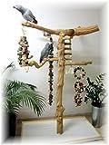 Kletterbaum für Vögel, Freisitz, Papageienspielzeug, aus ORIGINAL Java Holz,Stamm aus Javaholz, 165 cm