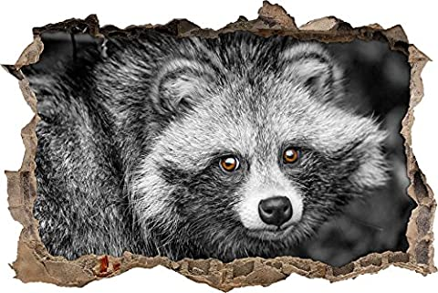 Pixxprint 3D_WD_S4915_62x42 kleiner süßer Waschbär Wanddurchbruch 3D Wandtattoo, Vinyl, schwarz / weiß, 62 x 42 x 0,02 (Usa Zu Weihnachten)