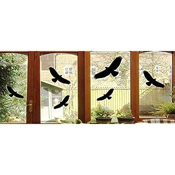 Amazonde 5 Vogel Aufkleber Vögel Fenster Glas Greifvogel