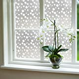 #8: Imported Reusable 45x100cm Frosted Frost Frosting Glass Window Film Sticker Dandelion