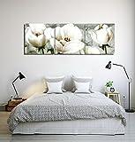 LB Flores,Plantas,Tulipanes,Blanco_Cuadro de Pintura al óleo Moderna Impresión de la Imagen en la Lona Arte de la Pared para la Sala de Estar,Dormitorio,decoración del hogar,3 Piezas 40x40,con Marco