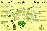 Tea Tree Therapeutic Soap - Anti FUNGAL Anti Microbial Face Body Feet Hand Hair Nails Bath Shower Gel/Effective lice Kid's Shampoo All Skin 200 ml