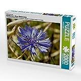 CALVENDO 4059478949911 Kornblumen - Blaue Schönheiten 2000 Teile Lege-Größe 90 x 67 cm Foto-Puzzle Bild von LöWer Sabine, Weiß