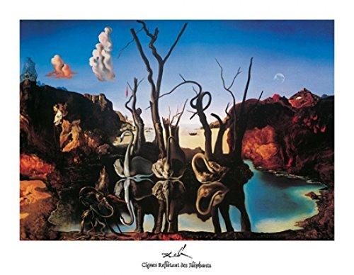 Salvador Dali - Swans Reflecting Elephants Poster Drucken (35,56 x 27,94 cm) - Swans Reflecting Elephants Von Dali