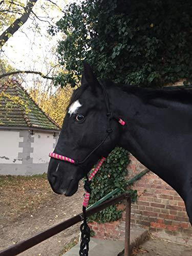 Knotenhalfter mit Strick für Pferde - gepolstert an Nase und Genick, ideal für Bodenarbeit, Pferdeausbildung, Training (schwarz-pink-grün)