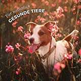 AniForte B.A.R.F. Line No1 Gemüse-Kräuter Vielfalt 1 kg glutenfrei- Naturprodukt für Hunde - 6
