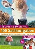 100 Sachaufgaben 3./4. Klasse: Lieblingstiere - Glanzleistungen - Natur