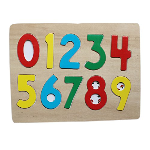 0-9 Wooden Number Puzzle Board With Peg Knobs – (WNTb074)