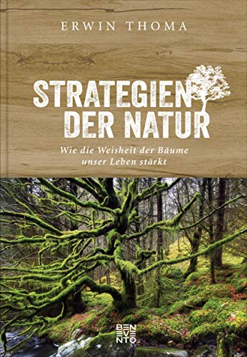Strategien der Natur: Wie die Weisheit der Bäume unser Leben stärkt. Evolution und Biologie, Geschichten und Mythen - was wir vom Wald lernen können.