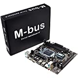 H61 Motherboard Cartes mères(Socket LGA1155,Chipset INTEL H61, DDR3, 2 Dimms 16GB, Micro ATX) - 16GB DDR3