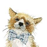 Keilrahmen-Bild -Carol Robinson: Cute Critter Fox Leinwandbild Fuchs Wild Tiere lustig (50x50)