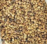 Kaffee Bohnen (Samen) Coffea arabica -10 Samen - keimfähig !!