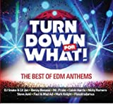 #9: Turn Down for What - The Best of EDM Anthems