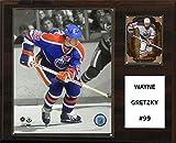 NHL Edmonton Oilers Wayne Gretzky Player Plaque, 30,5x 38,1cm