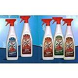 Deodorante Essenza Olè Oies Fragranze Luxury 750ml x 12 Pezzi (Ruby)