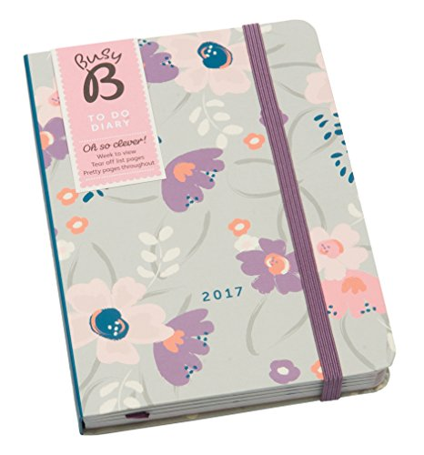 busy-b-2017-to-do-diary-with-tear-out-to-do-lists