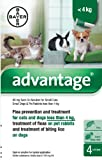 Advantage 40 mg Spot-On Solution for Small Cats,...