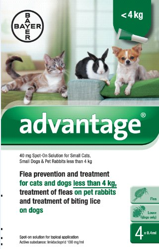 advantage-40-mg-spot-on-solution-for-small-cats-small-dogs-and-pet-rabbits-up-tp-4kg