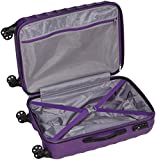 American Tourister Palm Valley Spinner, 67 cm, 61 Liters, Royal Purple - 5