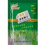 Shopmeeko Brotes de soja negra * 1 paquete (50 ml) & # 39; s (PC) * Glycinemax * Herencia sin OMG * Samen: 1 paquete