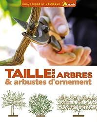 TAILLE DES ARBRES ET DES ARBUSTES D'ORNEMENT