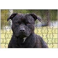 Staffordshire Bull Terrier (Nero) grande puzzle 96pezzi