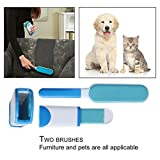 Best Home-it lint remover - Panzl Pet Fur Remover, Pet Hair Brush Review