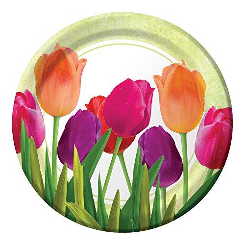 Unbekannt Creative Converting 8Zählen stabile Stil Papier Spring in Bloom Speisetellern, 22,2cm Pink/Koralle/Violett/Grün