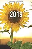 2019: Jan - Dez Wochenplaner | 365 Tage Terminkalender mit Uhrzeit | 1 Tag auf 1 Seite, ca. A5 | Sonnenblume