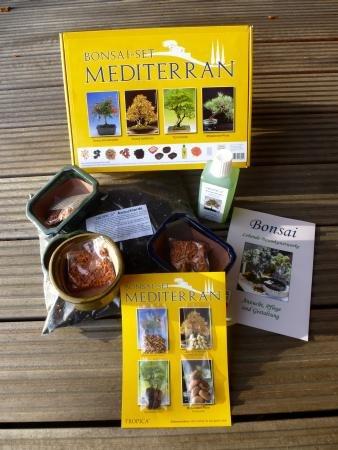 tropica-set-bonsai-mediterran-mit-samen-von-zwerg-granatapfel-zwerg-apfelsine-tamarinde-pinie