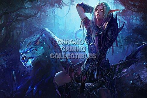 World of Warcraft – Nachtelfen Jägerin Poster