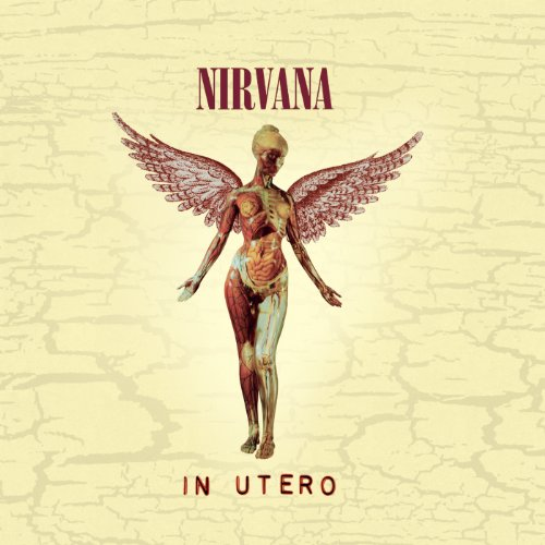 In Utero - 20th Anniversary Re...